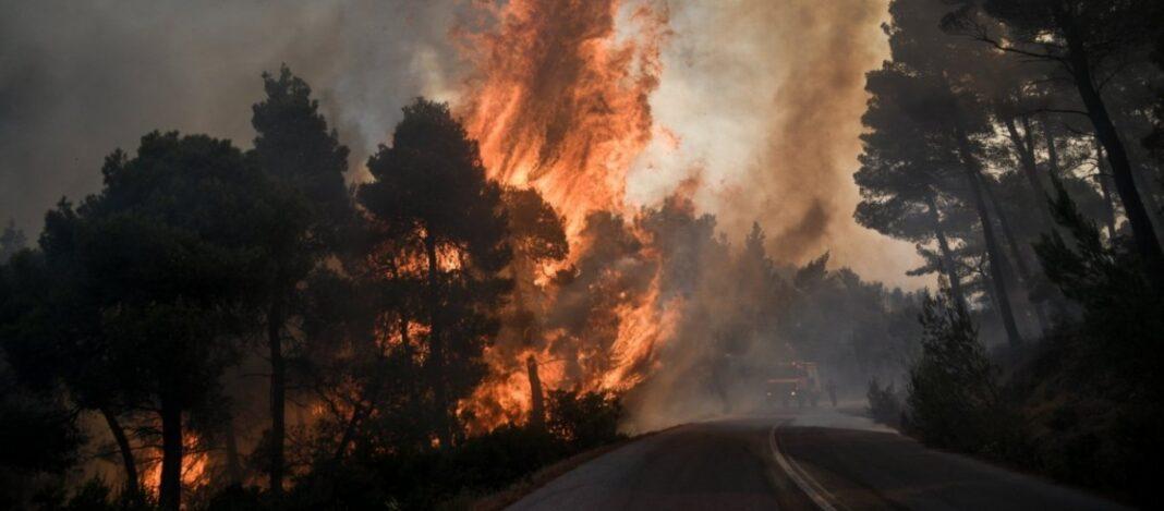 Τώρα: Πυρκαγιά σε δασική περιοχή στους Χωροεπισκόπους Κέρκυρας