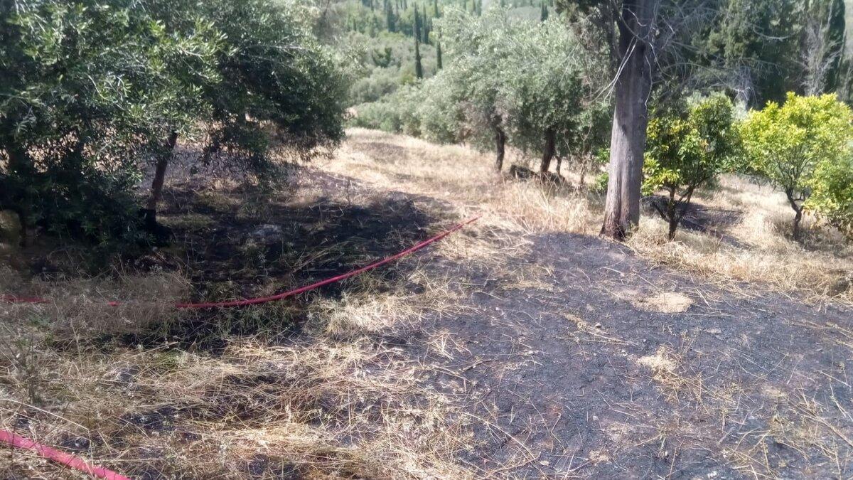 Πυρκαγιά σε δασική περιοχή στους Χωροεπισκόπους Κέρκυρας