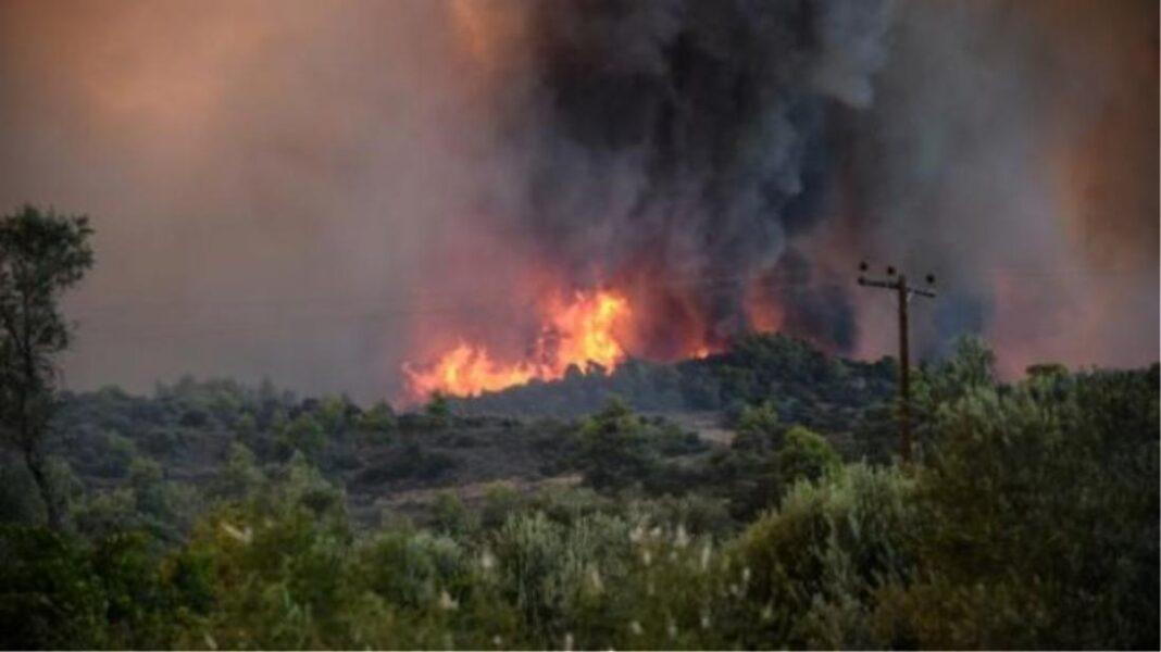 Πυρκαγιά σε δυο εστίες στη Μακρακώμη Φθιώτιδα