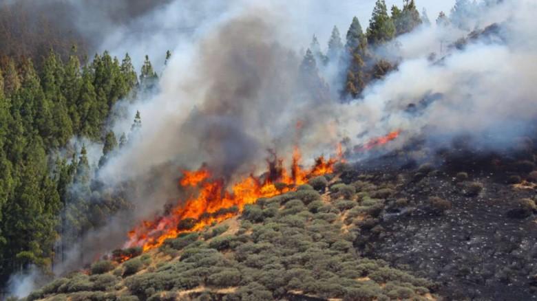Τώρα: Μεγάλη πυρκαγιά στην Ξάνθη