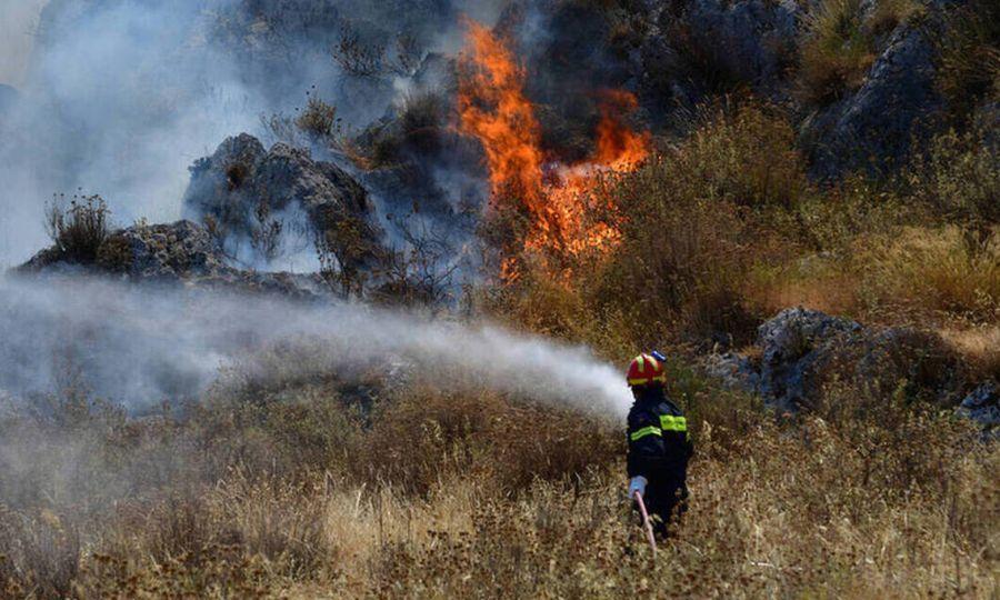 Πυρκαγιά κοντά στον Ηλεκτροπαραγωγικό Σταθμό Βασιλικού