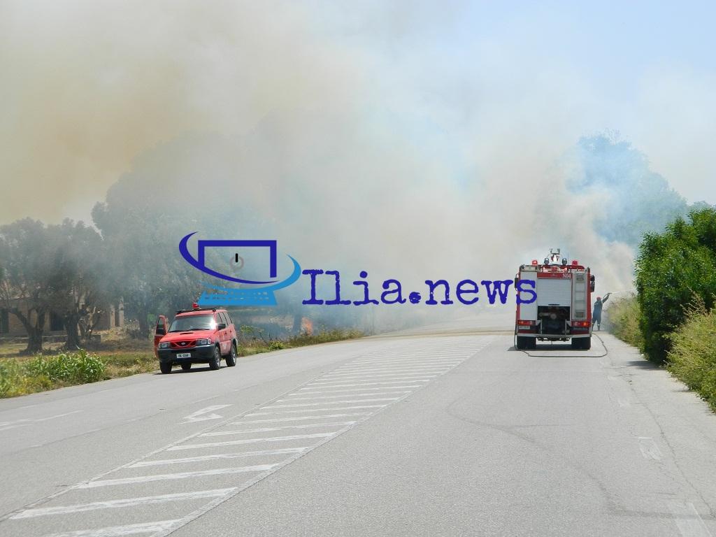 Πυρκαγιά στην Μαραθιά Ηλείας