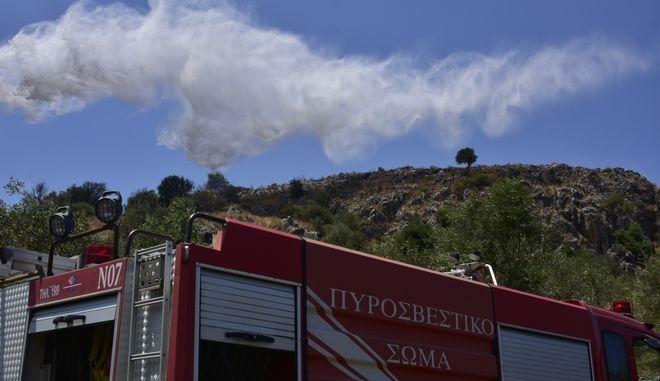 Οριοθετήθηκε η πυρκαγιά στο Κυριάκι Βοιωτίας