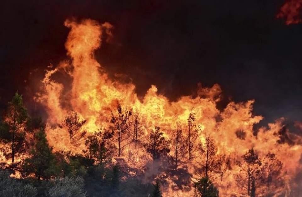 Πυρκαγιά στη Βροντού Σερρών