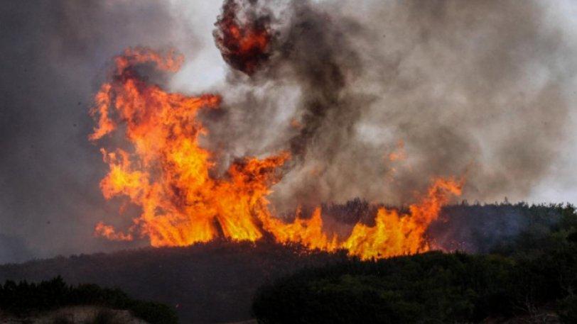 Πυρκαγιά σε δασική έκταση στα Δραγωτινα Κέρκυρας