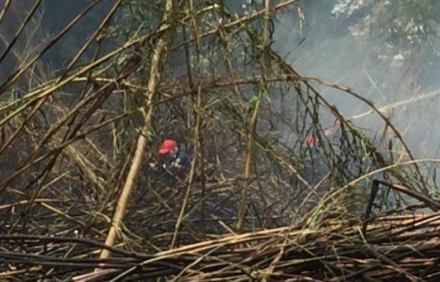 Πυρκαγιά εν υπαίθρω πίσω από τα ΚΤΕΛ Σερρών