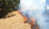 Πυρκαγιά στο Περιγιάλι Καβάλας – Άμεση επέμβαση της Πυροσβεστικής
