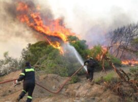 43 Δασικές πυρκαγιές εκδηλώθηκαν σε όλη την χώρα
