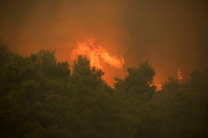 Πυροβεστική: 67 δασικές πυρκαγιές μέσα σε ένα 24ωρο
