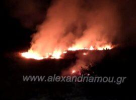 Πυρκαγιά στο παλιό γήπεδο Λουτρού.(φωτο-βιντεο)