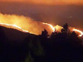Αρκαδία: Σε εξέλιξη δασική πυρκαγιά στον Άγιο Πέτρο Κυνουρίας