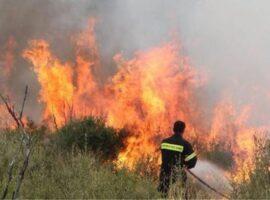 Πυρκαγιά  εν ύπαιθρω ΤΩΡΑ στην Αθήνα