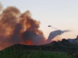 Ρεκόρ εννιαετίας στις πυρκαγιές της Ηλείας