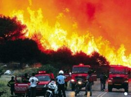 Πυροσβεστική: 23 δασικές πυρκαγιές το τελευταίο 24ωρο