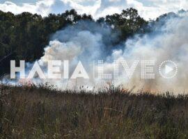 Πυρκαγιά σε χορτολιβαδική έκταση στην Σπιάντζα Πύργου