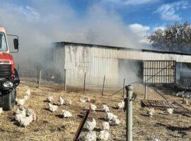 Μαζαράκι: Πυρκαγιά σε στάβλο – Κινητοποίηση για την Πυροσβεστική Υπηρεσία