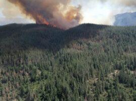 Πυρκαγιά σε δάσος Natura στην Χιλή (Φώτο)