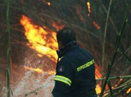 Πυρκαγιά σε καλαμιές στην Κρεμαστή και σε ξενοδοχείο στα Κολύμπια
