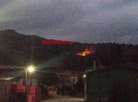 Πυρκαγιά σε δασική έκταση στο Κουτσομόδι Νεμέας