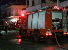 Προφυλακιστέος ο 31χρονος που κατηγορείται ότι έκαψε ζωντανά δύο σκυλιά κι έβαζε πυρκαγιές σε ΙΧ