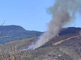 Μεγάλη πυρκαγιά σε εξέλιξη στη Νέδουσα Μεσσηνίας –  Σπεύδει και πυροσβεστικό αεροσκάφος