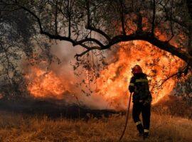 Έκκληση της Πυροσβεστικής για τις φωτιές αυτής της περιόδου