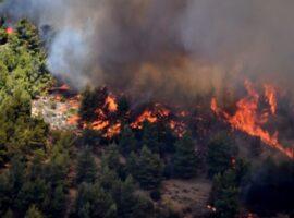 Ζαχάρω: Συναγερμός για δασική πυρκαγιά στην Αρήνη