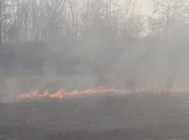 Πυρκαγιά σε έκταση δίπλα στον δρόμο Κατερίνης – Νέας Εφέσου