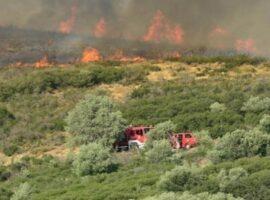 Εκτατο-Και δεύτερη δασική πυρκαγιά στην Ηλεία