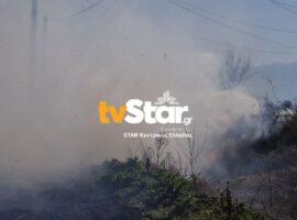 Φθιώτιδα: Σε δύο πυρκαγιές κλήθηκε η Π.Υ. (φωτο)