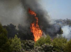 Πρέβεζα : Πυρκαγιά στη θέση Φραξύλα Καστροσυκιάς