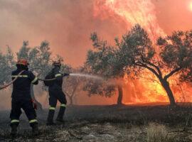 Μεσσινία: Πυρκαγιά ΤΩΡΑ ανάμεσα σε Μουζάκι και Χριστιάνους