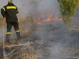 Πυρκαγιά στην Άσσηρο Θεσσαλονίκης