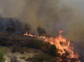 Πυρκαγιά σε αγροτοδασικη έκταση στο Σοφικό Κορινθίας