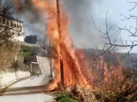 Πυρκαγιά στη Μακρινίτσα Πηλίου (Φώτο)