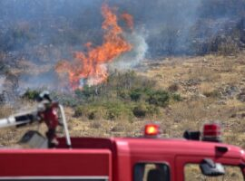 Πυρκαγιά σε αγροτική περιοχή στην Προσύμνη Αργολίδας
