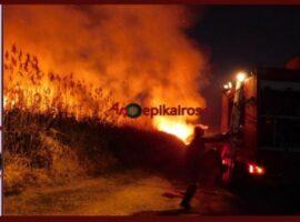 Αλεξάνδρεια Ημαθίας – Πυρκαγιά λίγο έξω από το Νεοχωρόπουλο (Φώτο – Βίντεο)