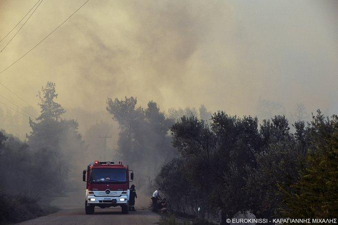Δασική πυρκαγιά στην Σπάρτη