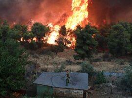 Πυρκαγιά ΤΩΡΑ σε αγροτοδασική έκταση στην Αχαΐα