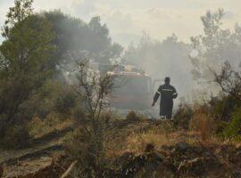 Πυρκαγιά εν υπαίθρω στο πεδίο βολής στο Σαρακηνό.