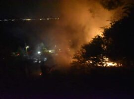 96 Δασικές πυρκαγιές το τελευταίο 24ωρο.