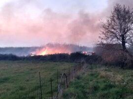 Πυρκαγιά στο Καπελέτο Ηλείας (Φώτο)