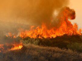 Κέρκυρα: Πυρκαγιά σε δασική έκταση στον Παραμόνα