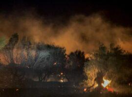 Πυρκαγιά σε εξέλιξη στην παράλια του Πλατύ στη Λήμνο
