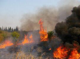 Πυρκαγιά σε  χορτολιβαδική έκταση στο Αφάντου στην Ροδο