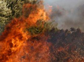 Πυρκαγιά στην Ασπροπουλιά Μεσσηνίας