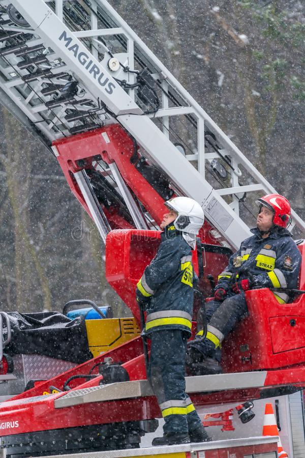 πυροσβέστες που κόβουν τους κλάδους ενός δέντρου 110791215