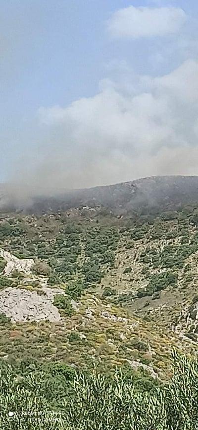 Σε εξέλιξη η πυρκαγιά στη Μάνη – Στην μάχη ισχυρές δυνάμεις της πυροσβεστικής και δύο αεροσκάφη
