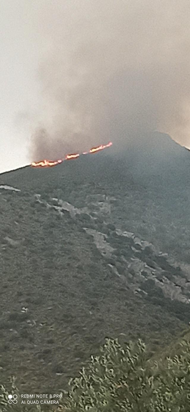 Πυρκαγιά ΤΩΡΑ στην Ανατολική Μάνη