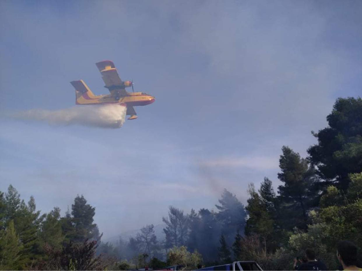 Μεγάλη πυρκαγιά ΤΩΡΑ σε δασική έκταση στην περιοχή Λίμνη Ευβοίας